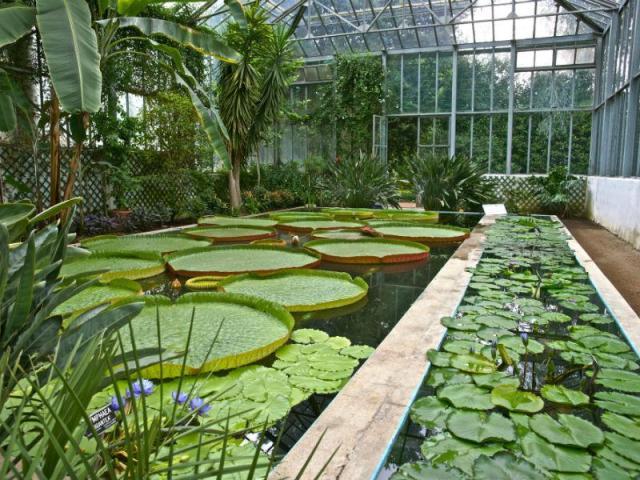 10 most beautiful gardens in Europe Giardini di Villa Taranto